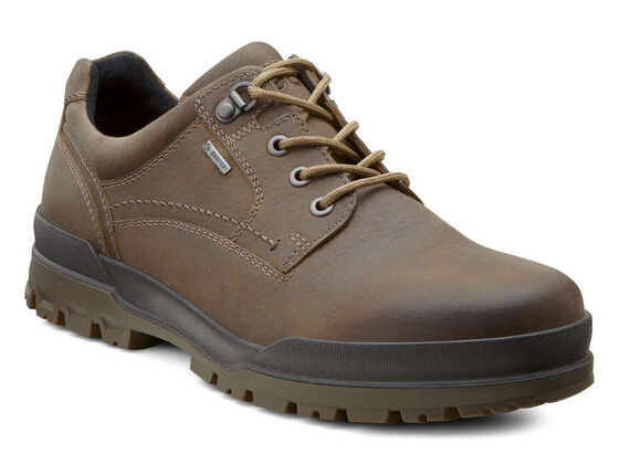 ECCO Track 6 GTX Plain Toe Lo (NAVAJO BROWN/DARK CLAY)