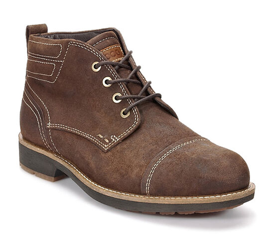 ECCO Bendix Cap Toe Tie (COCOA BROWN)