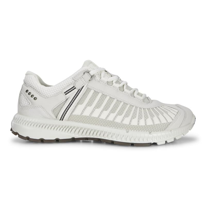 ... ECCO Mens Intrinsic TR RunECCO Mens Intrinsic TR Run WHITE/SHADOW WHITE  (52292) ...
