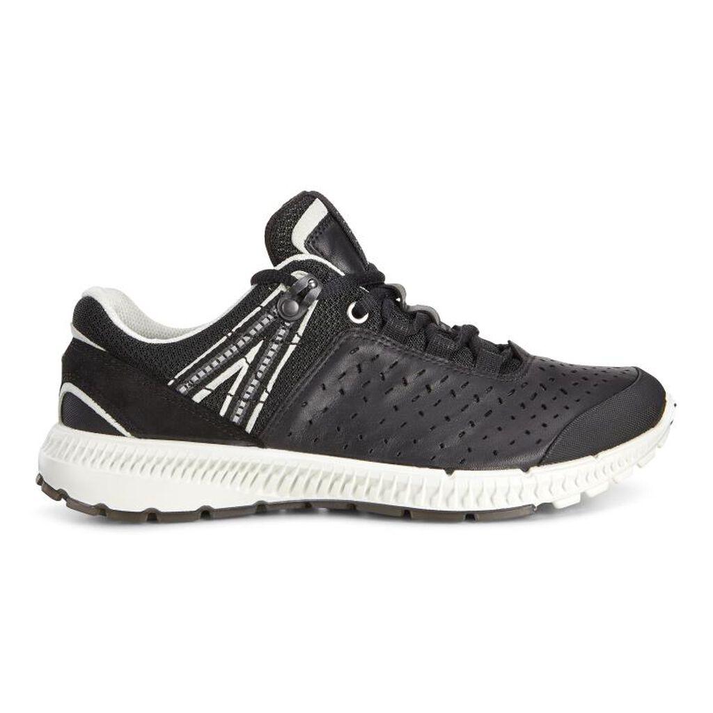 Trail Running Shoe Everyday