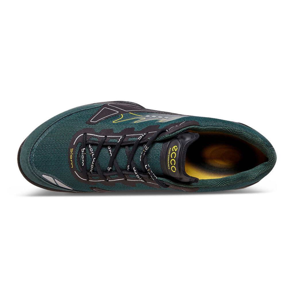 Trail And Road Hybrid Running Shoes
