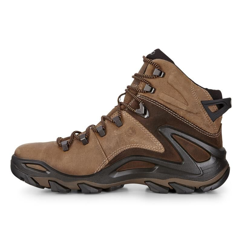 eccoTERRA EVO - Walking boots - grey eSdrMnpj