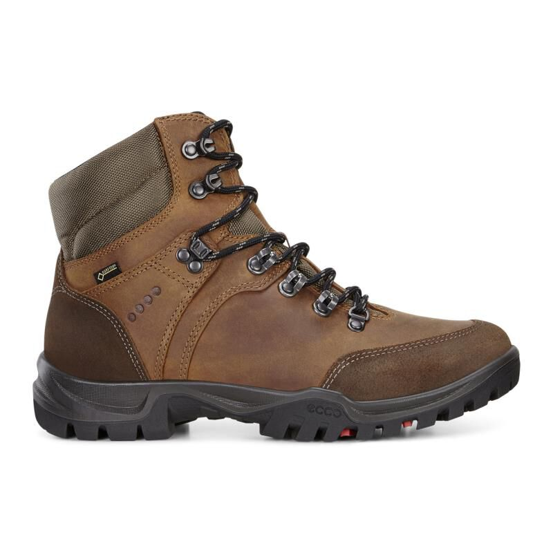 Favorably Mens Boots - Ecco Xpedition III Gtx Coffee