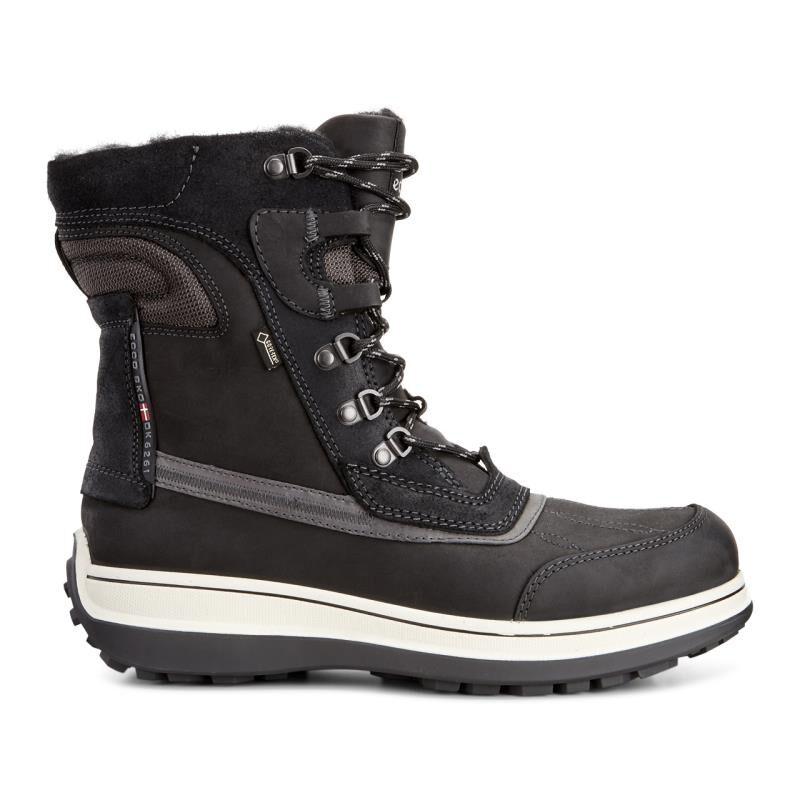 ... ECCO Roxton GTX BootECCO Roxton GTX Boot BLACK/MOONLESS (55869) ...