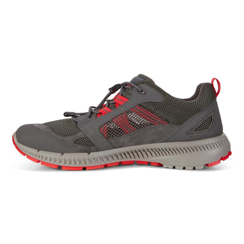 New Ecco Terracruise Ii - Grey Sports Shoes for Men Sale