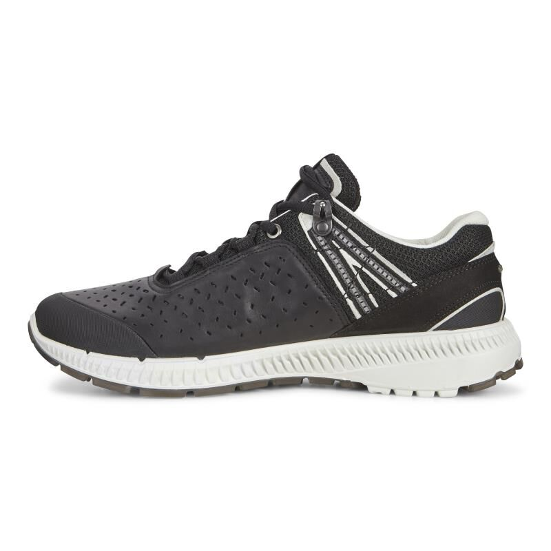... ECCO Mens Intrinsic TR WalkECCO Mens Intrinsic TR Walk BLACK/BLACK  (51707) ...
