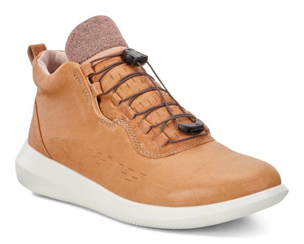 Ecco Women's Scinapse High Top Sneaker 1FTa17VFy