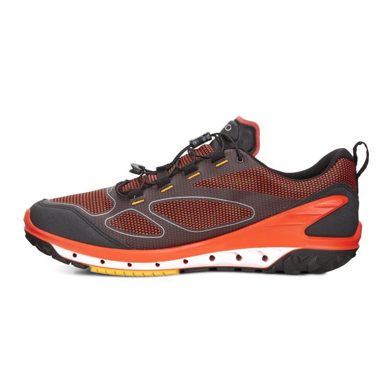 ecco biom shoes for men