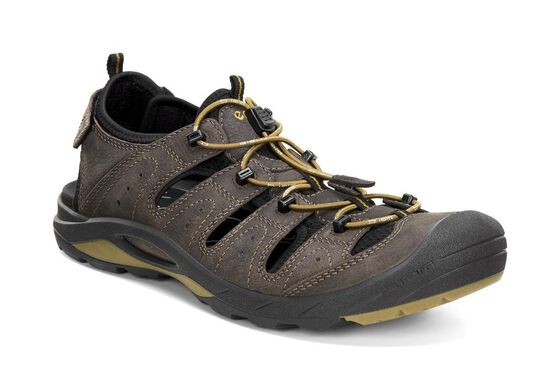 ECCO Mens BIOM Delta Offroad (COFFEE/BLACK/DRIED TOBACCO)