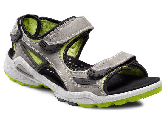 ECCO Mens BIOM Chiappo (WILD DOVE/LIME PUNCH)
