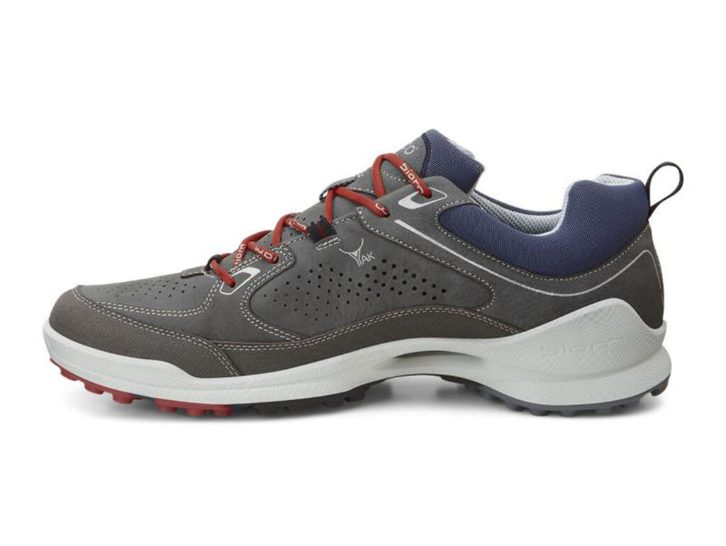 What Soft Cleats Fit Ecco Biom  Shoes