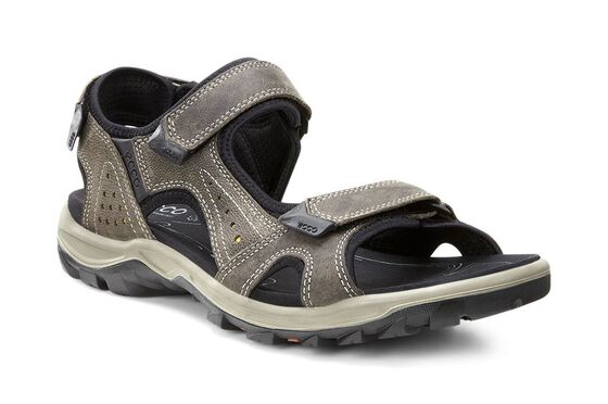 ECCO Mens Cheja Sandal (WARM GREY/OLIVE OIL)