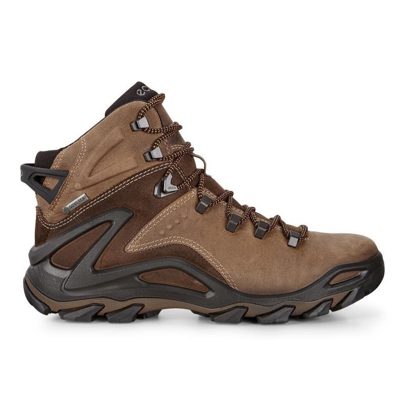 ecco TERRA EVO - Walking shoes - brown MQngogwFnI