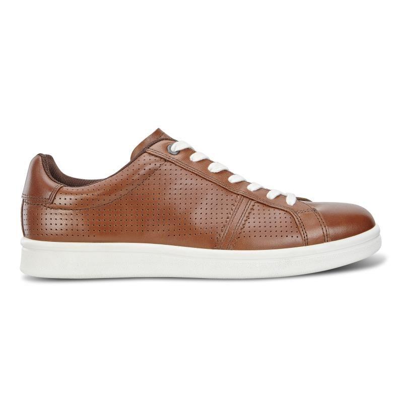 ... ECCO Kallum Premium SneakerECCO Kallum Premium Sneaker WHISKY (01283)  ...